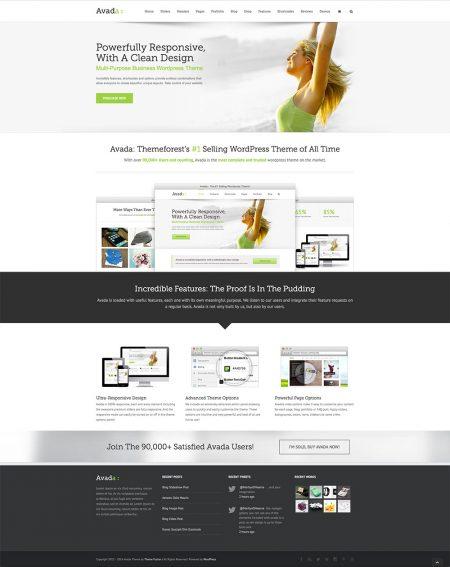 Wordpress Avada Theme